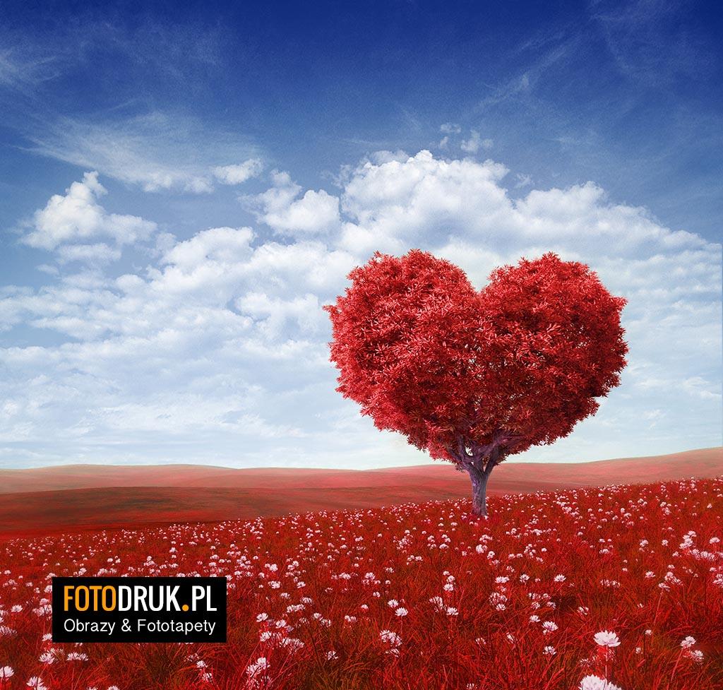 Czerwone serce - Prezent na Walentynki