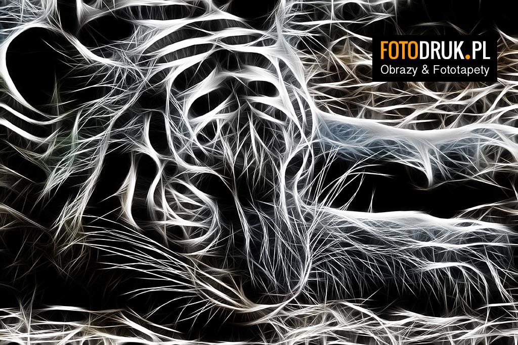 Tygrys - Abstrakcyjne obrazy na płótnie i fototapety
