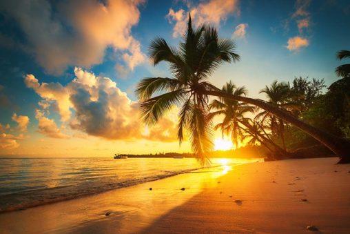Tropikalne wakcje