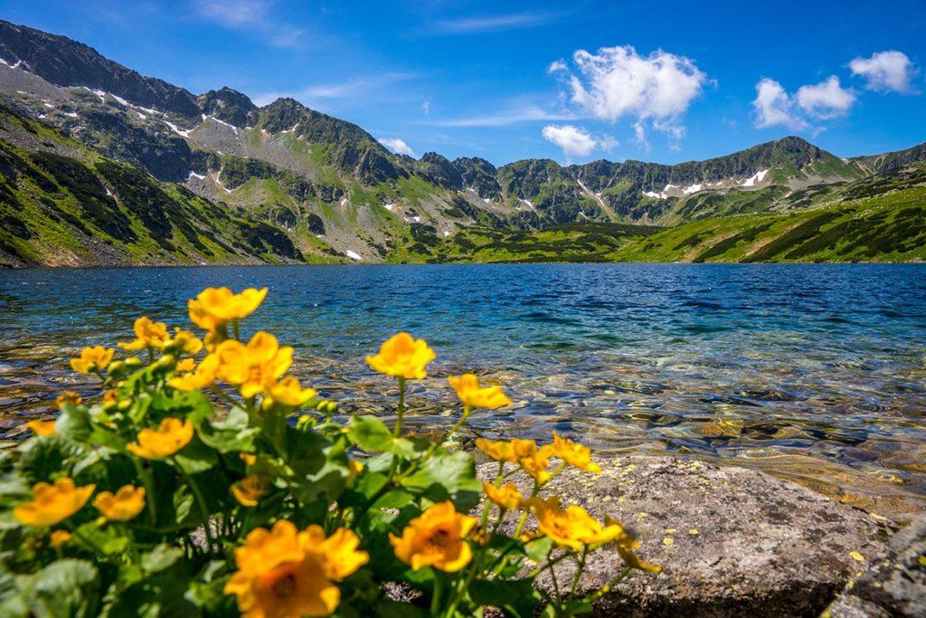 Dolina Pięciu Stawów Polskich w Tatrach - obrazy na płótnie i fototapety z krajobrazami