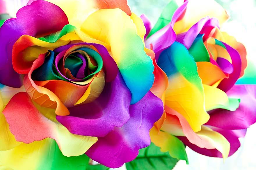 Obraz z kolorowym abstrakcyjnym kwiatem